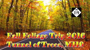 fall foliage trip 2016 m119 tunnel trees cross village