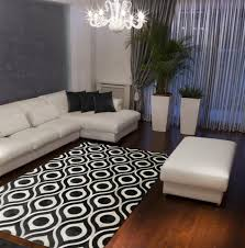Rug Area Living Room 15 Best 6 9 Area Rugs Images On Pinterest Area Rugs Black And