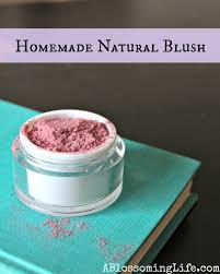 homemade makeup mugeek vidalondon