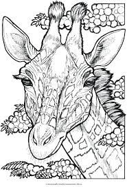 free coloring book pages mesmerizing coloring pages of dragons for