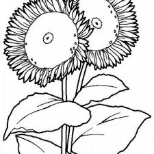 fried egg pan coloring pages download u0026 print