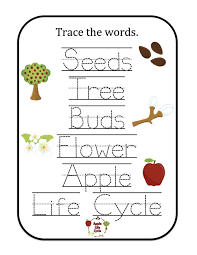 apple worksheets kindergarten 2017 olivia hytten printable