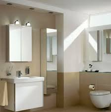 Bathroom Mirror Unit Bathroom Mirror Cabinet With Lights Top Bathroom The Strengths