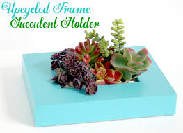 upcycled frame succulent holder the scrap shoppe