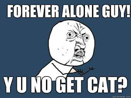 Forever Alone Guy Meme - forever alone guy y u no get cat y u no quickmeme