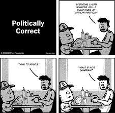 Politically Correct Meme - politically correct tom pappalardo