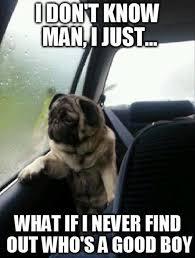 Dog At Vet Meme - new 25 dog at vet meme wallpaper site wallpaper site