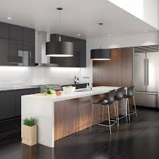 luxor kitchen cabinets cool acrylic kitchen cabinets pros and cons photo decoration ideas