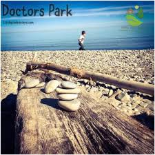 doctors park stick and stone constellations u2013 little pine learners