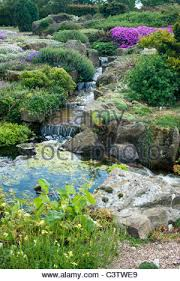 Water Rock Garden Alpine Rock Garden With Water Feature Stock Photo 36811755 Alamy