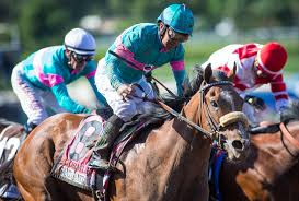 quotes from letting ana go stakes quotes santa anita park
