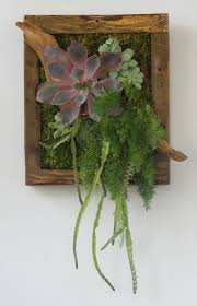 111 best vertical gardens towers wreaths images on pinterest