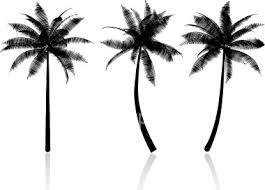 best 25 palm tree tattoos ideas on pinterest palm tree tattoo