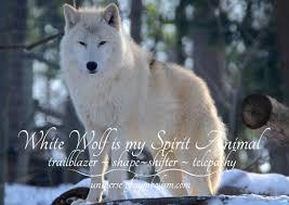 wolf symbolism meaning wolf spirit totem power
