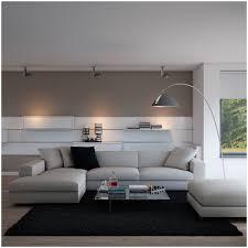 living room zebra rug a modern living room with contemporary