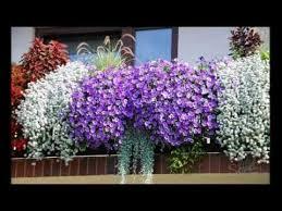 balcony flower gardening ideas youtube