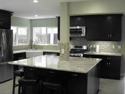 Black Cabinets White Countertops 59 Best Kitchens Java Shaker Cabinets Images On Pinterest