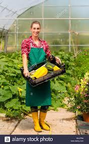 woman vegetable market garden shops retail shop shop