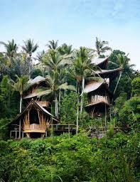 incredible house this incredible house in bali u0027s jungle is made from bamboo and