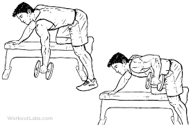 Dumbbell Exercises On Bench Single One Arm Dumbbell Bench Rows Workoutlabs