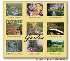 1145 best drought smart plants the website images on pinterest