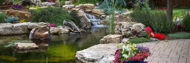 Aquascape Water Features Pond Construction Pond Maintenance Water Feature Installers In