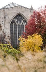 the divinity u003e academic catalog the university of chicago
