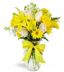 smile mile daisy vase germantown wi florist