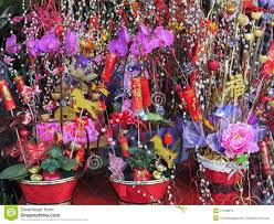 Flower Decoration For New Year by Flowers For Celebration Of Chinese New Year Stock Photos Image