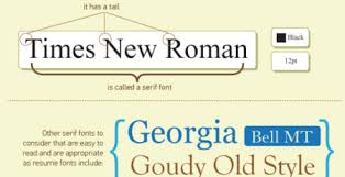 Good Font Size For Resume Professional Resumes Are They Worth The Money Or Just A Waste Of