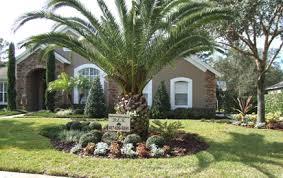 Landscaping Ideas For Florida by Florida Landscape Google Search Florida Landscape Pinterest