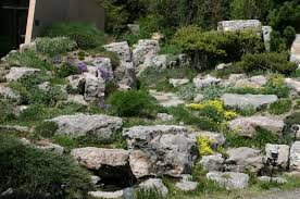 Images Of Rock Gardens A Rock Garden Can Provide A Tranquil Area Where One Can Feel