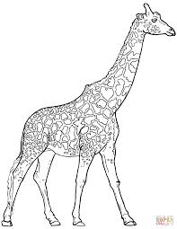 cartoon giraffe coloring pages coloring page