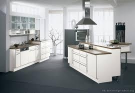 Contemporary White Kitchen Cabinets Unique Pictures Of Kitchens Modern White Kitchen Cabinets 18