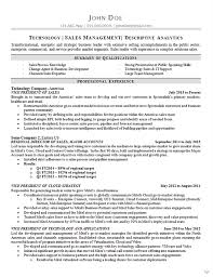 technology sales resume example vp of sales sales management