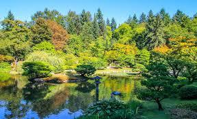 Botanical Gardens Seattle Japanese Tea Garden Seattle Garden Photos Reviews Botanical