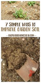 7 simple ways to improve garden soil veggies gardens and garden