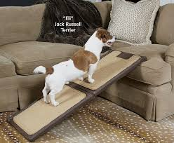 How To Remove Paint From Sofa How To Build A Dog Ramp Tools And Materials