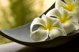 imagenes zen gratis cuadros y lienzos a medida zen zen pinterest zen lienzos y