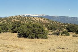 75 acres magnificent southern colorado land for sale by owner
