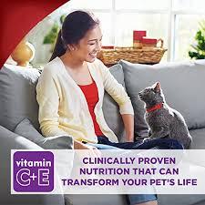 science diet feline 7 plus active longevity cat food 16 pound