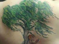 willow tree from weeping willow designs tatring