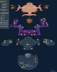 Map Of Universe Headquarter Map Hall Of Doom Dc Universe Online Forums