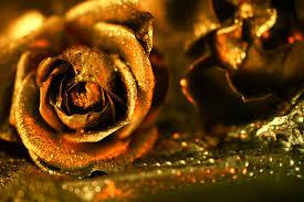 golden roses golden by jagerion on deviantart
