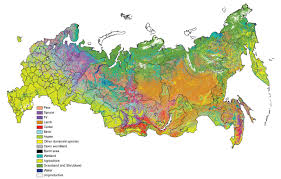 Russia Map Map Of Russia Political Regional