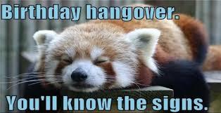 Hung Over Meme - birthday hangover funny birthday meme