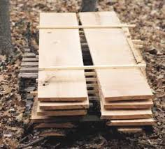 drying green wood popular woodworking magazine