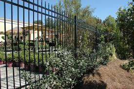 miami wrought iron fence entry mediterranean with palm trees