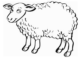 coloring sheep img 12840