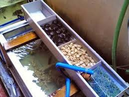 membuat kotak filter aquarium tips mudah membuat filter akuarium air tawar sendiri youtube